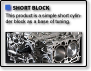 SHORT BLOCK ASSEMBLEY